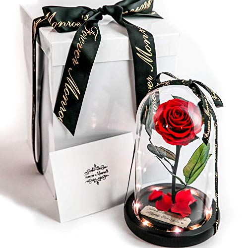 Rose in Glass Dome with Metal Engraved Plaque inspired by Beauty and the Beast Rose, Real Preserved Red Rose in Large Glass Dome with LED lights