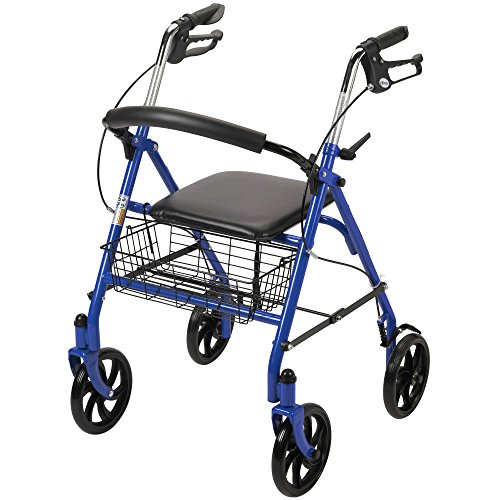 Drive Medical Four Wheel Walker Rollator with Fold Up Removable Back - Buttons Grandmothers