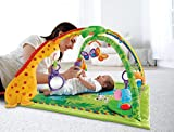 Fisher-Price Rainforest Melodies and Lights