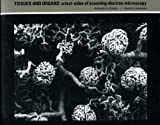 Tissues and Organs : A Text-Atlas of Scanning Electron Microscopy, Kessel, Richard G. and Kardon, Randy H., 0716700905