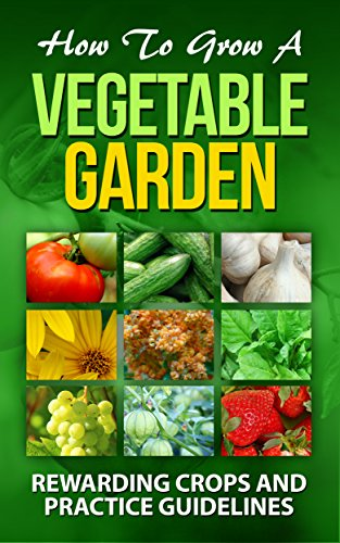 how-to-grow-a-vegetable-garden-rewarding-crops-and-practice-guidelines-courgette-cucumber-elephant-g