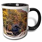 3dRose mug_97085_4 ''West Virginia, Cass Scenic Railroad, Steam Train - US49 WBI0030 - Walter Bibikow'' Two Tone Mug, Black/White, 11 oz