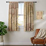youpinnong Beige, Curtains Energy Efficient, Small Large Ginkgo Leaves Pattern Dramatic Dated Fossil Maidenhair Tree Nature Art, Curtains Kitchen Window Set, W84 x L72 Inch Beige Brown