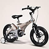 Kids' Bikes Gold Boys and Girls Baby Stroller 3-8 Years Old Children's Bicycles 12 14 16 Inch Suspension Bicycle (Color : 14 inch)