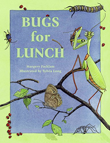 Bugs for Lunch - Lunch Bug