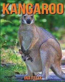 Kangaroo Children Book Of Fun Facts Amazing Photos On Animals In Nature