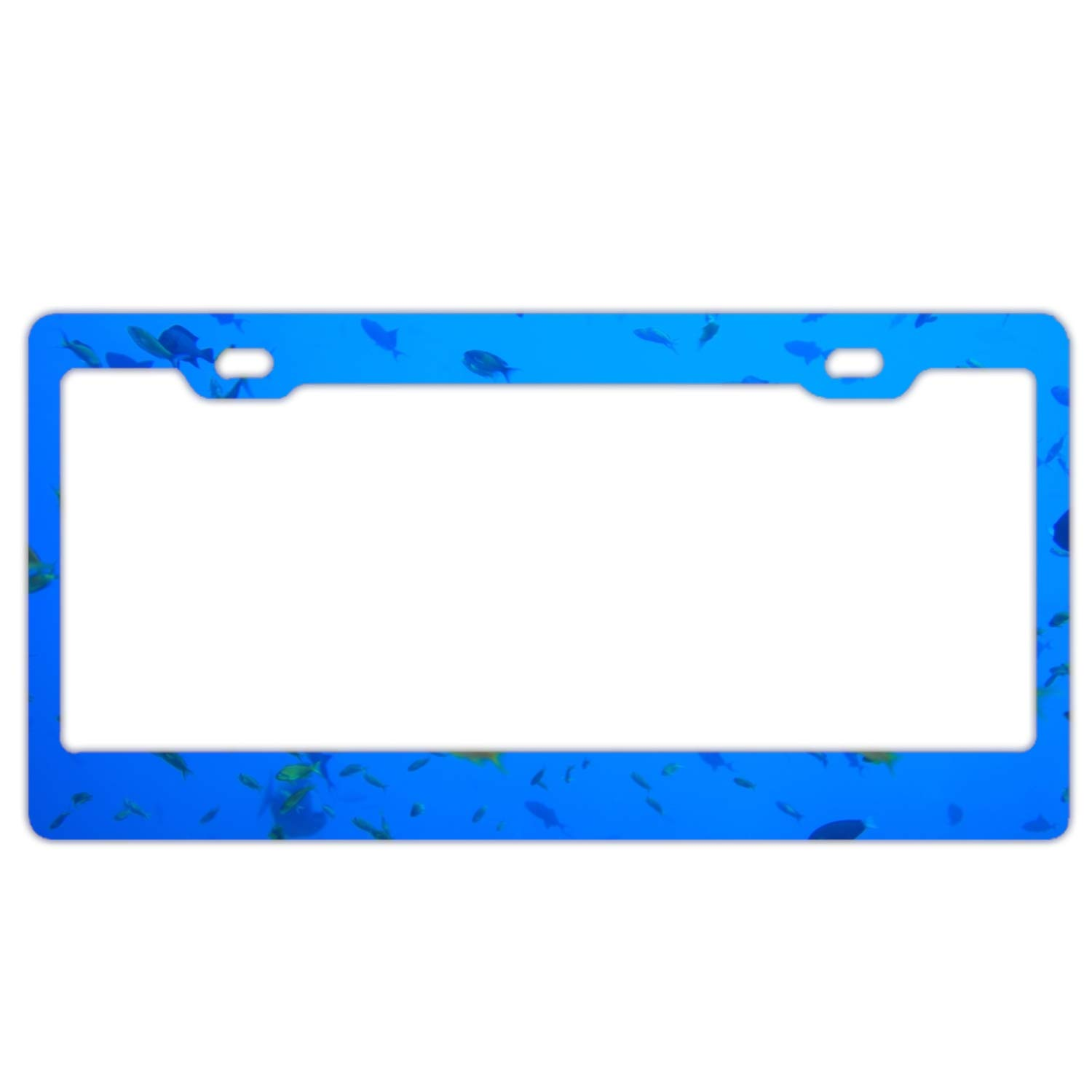 Imtailang License Plate Novelty Auto Car Tag Vanity Gift Boat Cloudy Flag