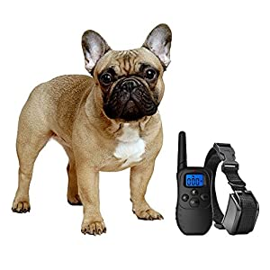 eXuby Shock Collar for Small Dogs with Remote – Includes 2 Collars – Small & Medium and Training Clicker – 3 Modes (Sound, Vibration & Shock) with Rechargeable Batteries