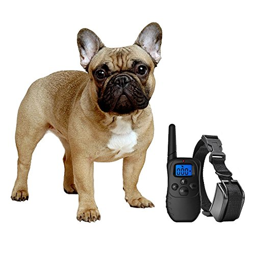 eXuby Shock Collar for Small Dogs with Remote - Includes 2 Collars - Small & Medium and Training Clicker - 3 Modes (Sound, Vibration & Shock) with Rechargeable Batteries ()