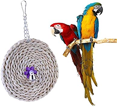Mascota Loro Juguete Flor Círculo Madera Ratán Bell Shell Colorido Pájaro Jugar Masticar Juguetes para Loro Jaula Colgando Accessoreis