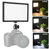 #5: Pangshi Super Slim Dimmable LED Light Panel 3200K-6200K LED Video Light LCD display screen, with hot shoe ball mount, Color temperature and Brightness can be adjusted