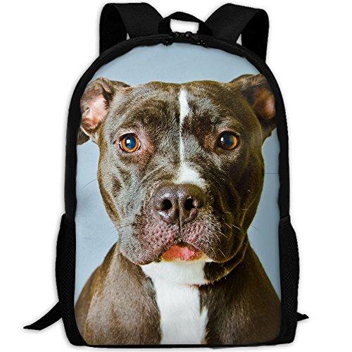 Unisex Backpack Lightweight Laptop Bags Shoulder Bag School Bookbag Daypacks ()