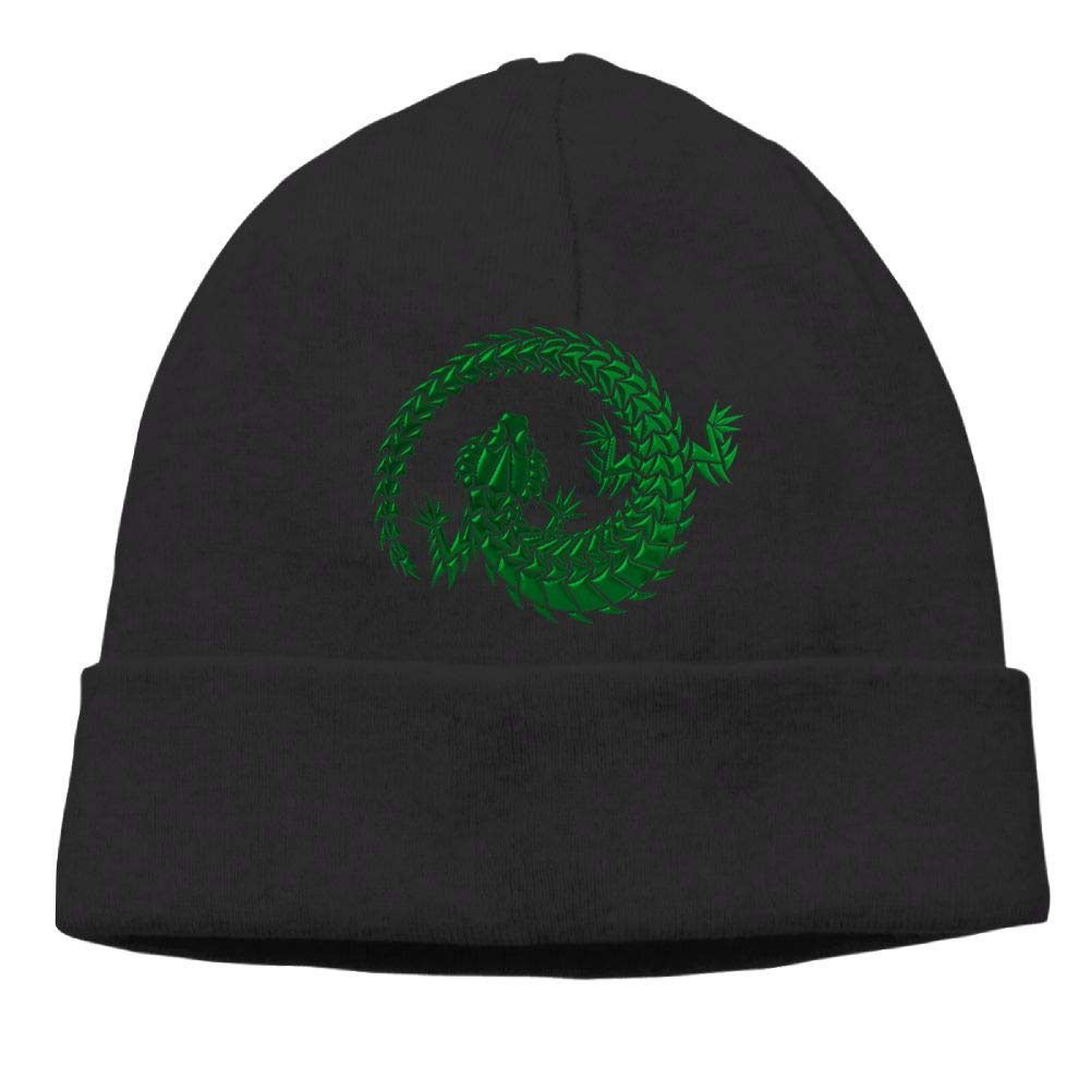 Oopp Jfhg Green Lizard Beanies Knit Hats Skull Cap Men