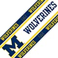 Sports Coverage NCAA Michigan Wolverines Wall Border