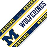 Michigan Wolverines Wall Border