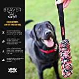 EzyDog Beaver Tail Dog Toy - Versatile and Durable Fetch and Tug Toy that Floats in Water - Perfect for Retrievers and Water Dogs - Large Size for Dogs Over 44 lbs - Small Size for Dogs Under 44 lbs