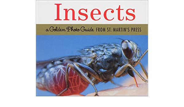 A Golden Photo Guide from St Martins Press Insects