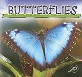 Butterflies, Jason Cooper, 1595157395