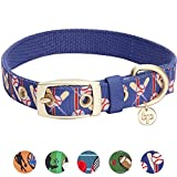 Blueberry Pet 5 Patterns Durable Sports Fan Baseball Canvas Dog Collar with Metal Buckle in Navy Blue, Medium, Neck 13-16.5'', Adjustable Collars for Dogs