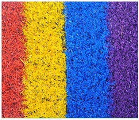 PING- 人工芝、 パイル高さ20mm 高密度 色4色の偽の芝生 排水穴付き難燃剤 学校の遊び場舗装装飾 5サイズ (Size : 2m×3m)