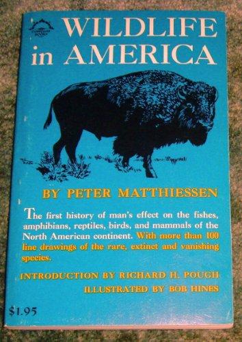 America The Book Pdf