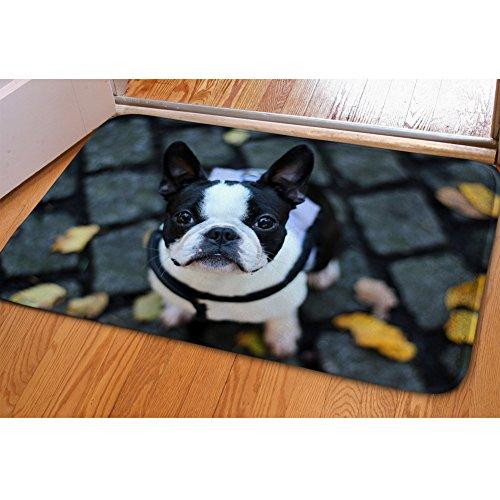 HUGS IDEA Cute Boston Terrier Print Washable Absorbent Doormats Entrance Way Floor Mat Carpet Home Decor ()