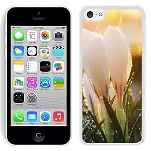 Krokus (2) Durable High Quality iPhone 5C Phone Case