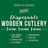 Wooden Disposable Cutlery 300 pc set | 100