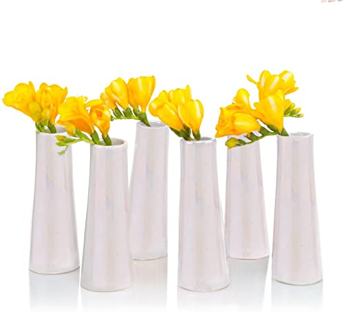 Chive – Set of 6 Galaxy, 1.5 in Wide 5.5 Tall Small Cylinder Ceramic Bud Flower Vase, Unique Single Flower Decorative Floral Vase for Home Decor, Bulk Pearl White