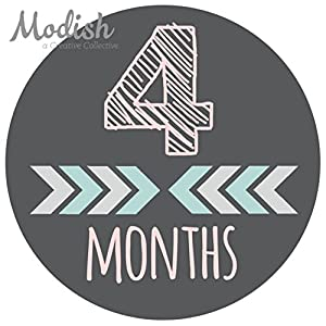 12 Monthly Baby Stickers, Pink, Gray, Tribal, Arrows, Chevron, Baby Month Stickers Girl, Baby Book Keepsake, Baby Shower Gift 5