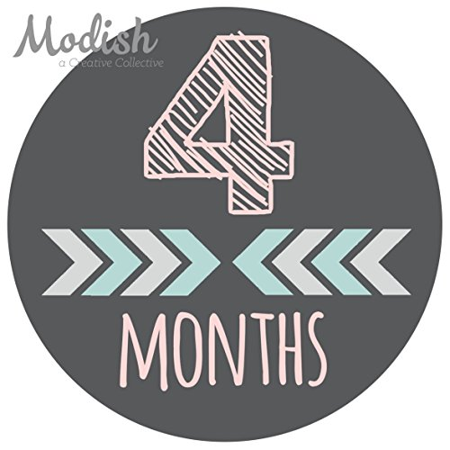 12-Monthly-Baby-Stickers-Pink-Gray-Tribal-Arrows-Chevron-Baby-Month-Stickers-Girl-Baby-Book-Keepsake-Baby-Shower-Gift