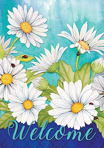 Custom Decor Delightful Daisies Welcome - Garden Size, Decorative Double Sided, Licensed and Copyrighted Flag - Printed in The USA Inc. - 12 Inch X 18 Inch Approx. Size