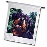 3dRose fl_4377_1 Rottweiler Portrait, Garden Flag, 12 by 18-Inch