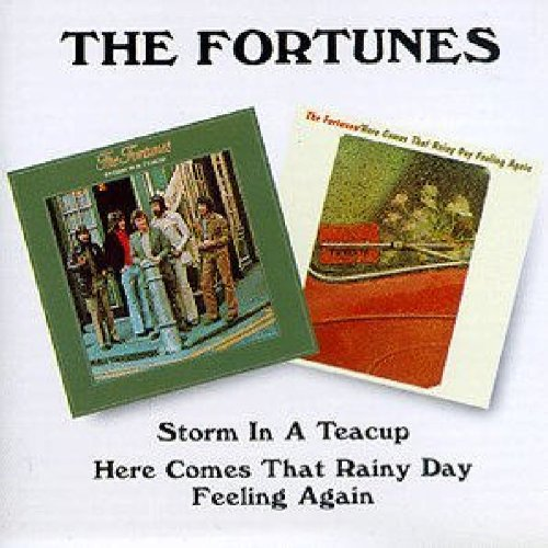 Storm in a Teacup / Here Comes That Rainy Day