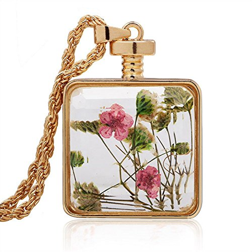 Price comparison product image Winter's Secret Pink Dried Flower Drift Bottle Glass Plated Pendant Necklace