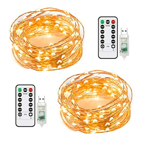 2 Pack 50 LED 16.4Ft Fairy String Lights, Warm White Firefly USB Powered Starry Lights with Remote Control, Waterproof Copper Wire Decorative String Lights for Bedroom, Christmas, House & Yard