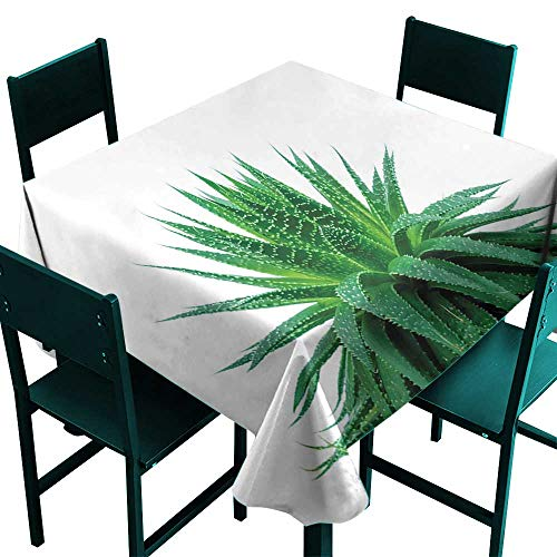 Natural Irridescent - Warm Family Plant Polyester tableclothMedicinal Aloe Vera with Vibrant Colors Indigenous Species Alternative Natural Remedy Indoor Outdoor Camping Picnic D71