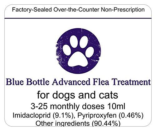 Review Blue Bottle Advanced FLEA