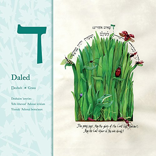 All the World Praises You: an Illuminated Aleph-Bet Book by Honeybee in the Garden (Image #2)