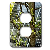 3dRose Alexis Photography - Objects - Oak tree with fresh leaves, solar power panel in the background - Light Switch Covers - 2 plug outlet cover (lsp_290827_6)