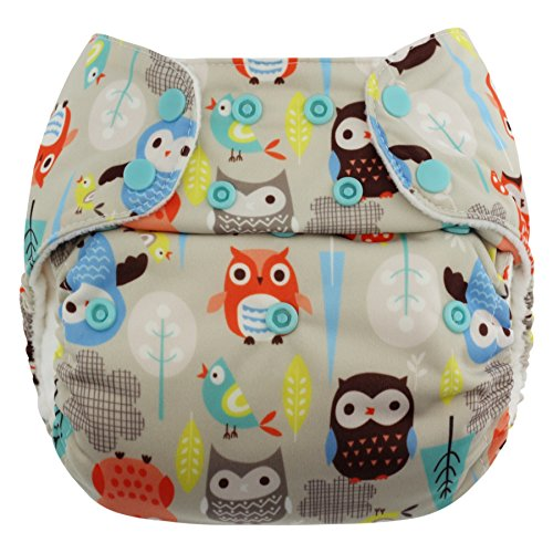 Blueberry One Size Simplex All in One Cloth Diapers, Made in USA (Owls)