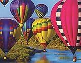 we have company jigsaw puzzle - Springbok Puzzles Take Flight Jigsaw Puzzle (100 Piece)