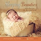 img - for Sleeping Beauties: Newborns in Dreamland 2014 Mini (calendar) book / textbook / text book