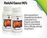 1 Bottle DXN Reishi Gano RG 90 RG-90 ( Ganoderma ) : 90 capsules per bottle