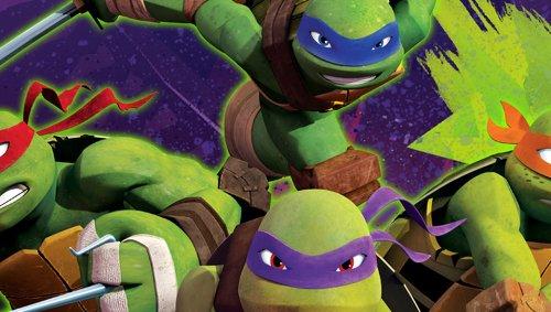 Sony PlayStation PS Vita Decorative Video Game Skin Ninja Turtles