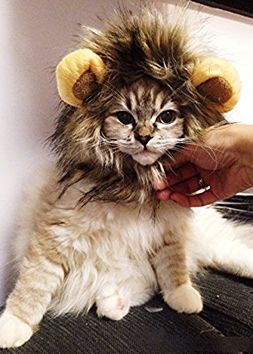 SporerPet-Costumes-Lion-Mane-Wig-Cat-Costume-and-Small-Dog-Costume-with-Complimentary-Feathered-Catnip-Toy-Brown-Headwear-Hat-with-Ears-for-Halloween-Christmas