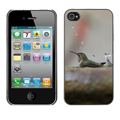 Premio Sottile Slim Cassa Custodia Case Cover Shell // F00007424 oiseau // Apple iPhone 4 4S 4G