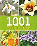 1001 Gartenpflanzen: Tipps und Ideen für den Gartenfreund