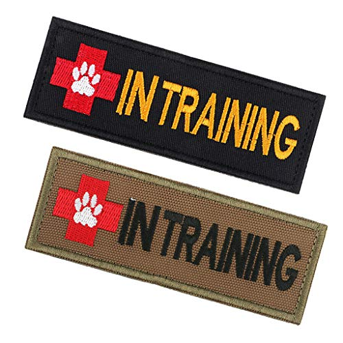 2pcs in Training Embroidered Patch with Hook Back Morale Badge for Pet - Training Shoes Preschool