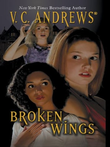 Broken Wings pdf